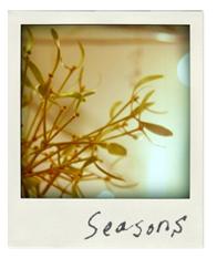 seasons シーズン